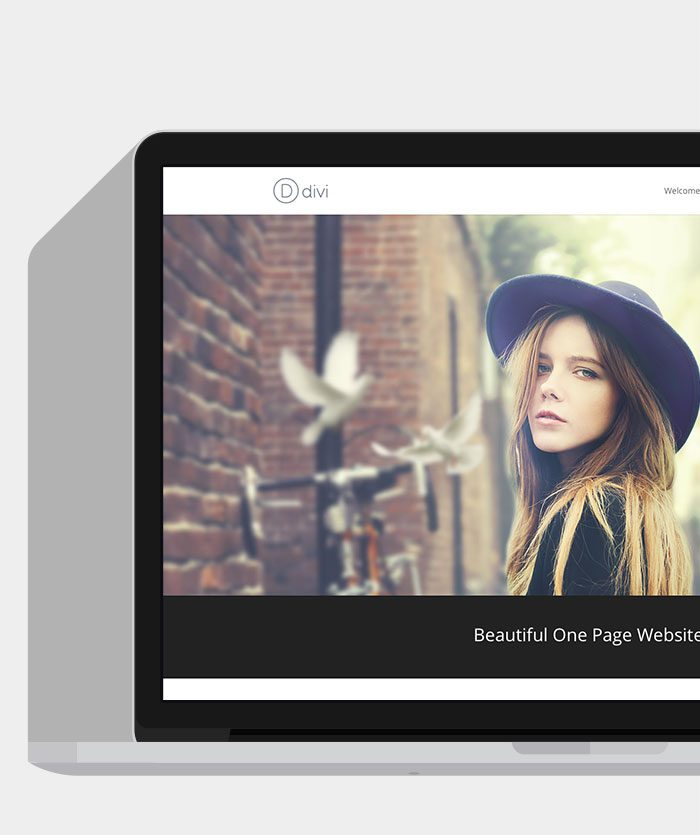 divi-wordpress-theme-2