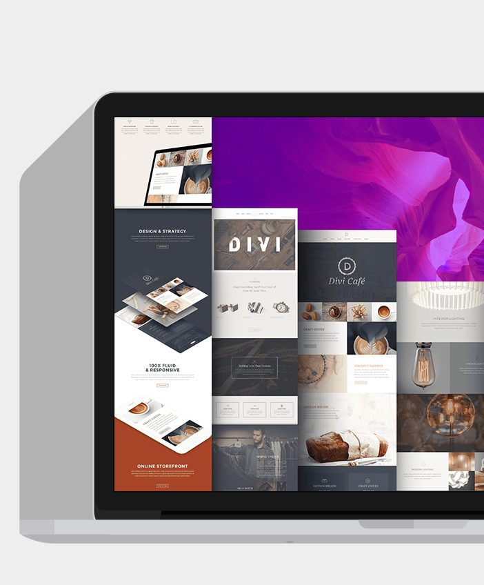 divi-wordpress-theme-9